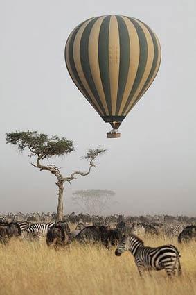African Safari Balooning